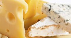 cropped-cropped-cropped-cheese7.jpg